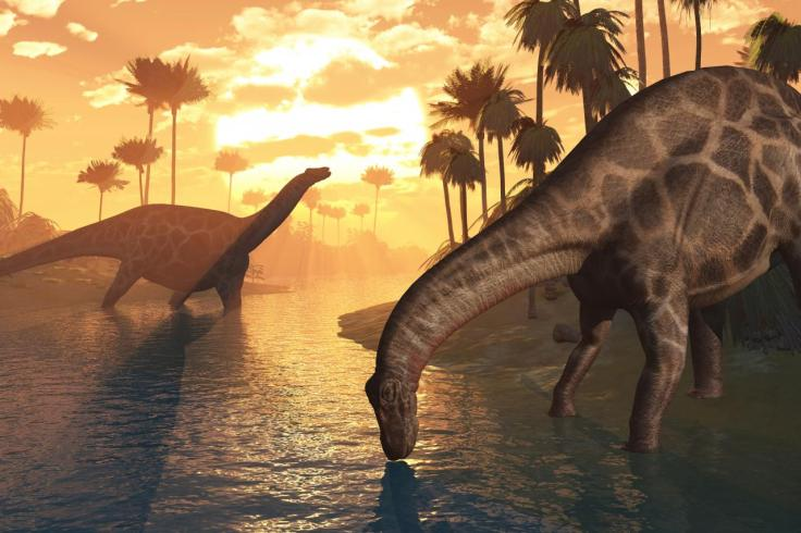 dinosaures11